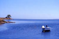 bellissimo paesaggio  - Mozia (4820 clic)
