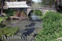 Fiumefreddo.. Ph Valdina Calzona 2010  - Fiumefreddo di sicilia (5869 clic)