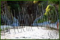Che posto incantevole..le gole dell'alcantara. Luglio 2008 Ph Valdina Calzona  - Francavilla di sicilia (1826 clic)