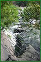 Che posto incantevole..le gole dell'alcantara. Luglio 2008 Ph Valdina Calzona  - Francavilla di sicilia (1817 clic)