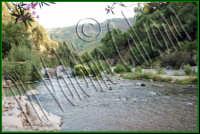 Che posto incantevole..le gole dell'alcantara. Luglio 2008 Ph Valdina Calzona  - Francavilla di sicilia (1944 clic)