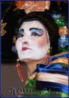 Carnevale di Misterbianco. Ph Valdina Calzona Febbraio 2009  - Misterbianco (3984 clic)