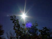 Magnifico sole  - Bolognetta (6345 clic)