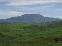 Alle falde della Rocca Busambra (1.600 m.)Bosco di Ficuzza  - Godrano (6952 clic)