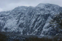 Rocca Busambra colpita dalla bufera di neve.  - Ficuzza (6245 clic)
