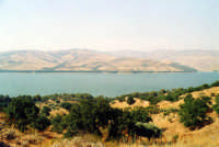 Il lago Pozzillo.  - Agira (3680 clic)