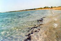 La spiaggia.  - Vendicari (32711 clic)