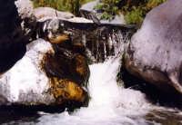 Piccola rapida del fiume Alcantara.  - Alcantara (5263 clic)