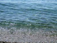 Nei pressi della foce del Fiumefreddo  - Fiumefreddo di sicilia (2961 clic)