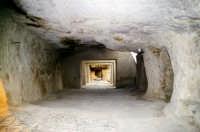 Sola Sperlinga negavit- le antiche scuderie-. In questo castello gli angioini si rifugiarono e resistettero 13 mesi prima di essere sopraffatti dai ribelli del Vespro (1282).  - Sperlinga (2870 clic)