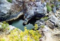Le tortuose insenature del fiume Simeto.  - Adrano (4387 clic)