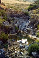 Le tortuose insenature del fiume Simeto.  - Adrano (5345 clic)