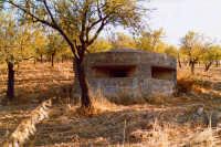 Bunker della II Guerra Mondiale  - Noto (4458 clic)