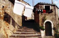 Vicolo caratteristico  - Nicosia (3099 clic)