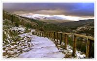 Monti Nebrodi - Sentiero che dal Rifugio Santa Maria del Bosco scende verso Randazzo. Etna sullo sfondo.  - Randazzo (10799 clic)