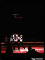 Acrobati... del circo Zavatta... dopo un po' di bracketing... ho cercato di includere tutti gli elementi della scena: il dinamismo, la tensione, i colori, il papà con il bimbo in braccio che ammira...   - Catania (2919 clic)
