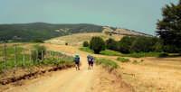 Scouting - In marcia sulla dorsale dei Nebrodi nei pressi del Lago Cartolari  - Nebrodi (5768 clic)