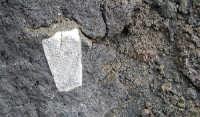 Close-up - Inclusione sedimentaria in lava del 2002 presso il Rif. Sapienza  - Etna (4325 clic)