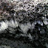Close up - Roccia lavica rivestita da piccoli cristalli di ghiaccio nei pressi dei crateri Silvestri  - Etna (3553 clic)