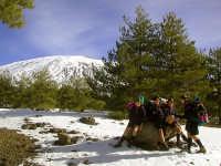 Scouting - Sosta sulla strada per il rifugio della Galvarina  - Etna (4595 clic)