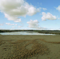 Spiaggia presso la foce di Vendicari  - Vendicari (5170 clic)
