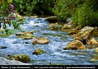 Riserva Naturale della Valle del Fiume Anapo  - Sortino (3354 clic)