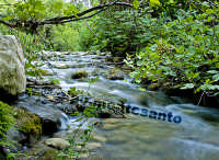 Fiume Anapo  - Sortino (4696 clic)