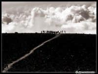 Titolo: From earth to sky...  - Etna (2203 clic)