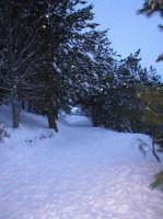-  - Etna (2753 clic)
