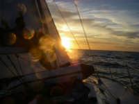 sailing marsala  - Marsala (2068 clic)