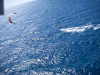 kite in sicilia  - Sciacca (4250 clic)