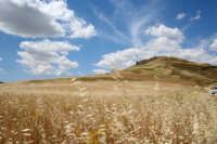 Paesaggio di fine primavera  - Scicli (3606 clic)