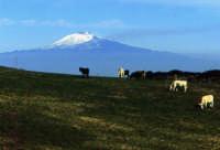 Etna  - Etna (3831 clic)