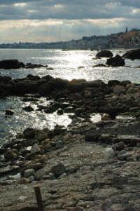 backlight  - Giardini naxos (3160 clic)