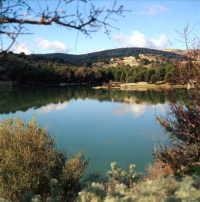 Lago S.Rosalia  - Giarratana (5715 clic)