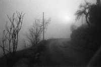 La strada che porta al fiume.  - Ragusa (2104 clic)
