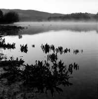 Lago di Santa Rosalia all'alba, in inverno.  - Giarratana (9903 clic)
