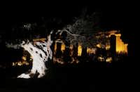 VALLE DEI TEMPLI giunone  - Agrigento (3642 clic)