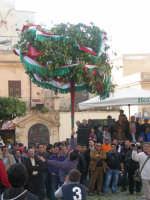 Festa degli schetti 2009(alzata dell'albero)  - Terrasini (6044 clic)