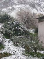 nevicata del 15 febbraio 2009  - Borgetto (5401 clic)