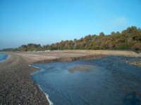Foce del Fiumefreddo Spiaggia di marina di cottone   - Marina di cottone (6169 clic)