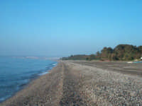 Spiaggia di marina di cottone   - Marina di cottone (3903 clic)