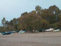 Fiumefreddo di Sicilia riserva naturale  - Marina di cottone (2349 clic)