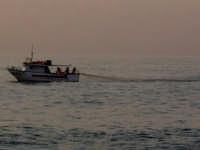 pesca delle costardelle  - Marina di cottone (7009 clic)