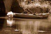 Pescatore intento nel suo lavoro nel lago di Ganzirri  - Messina (3689 clic)
