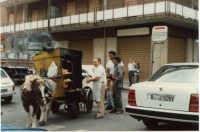 1989 - vecchi mestieri che scompaiono: il panellaro con cucina mobile,  trainata da asino sardignolo