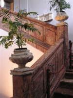 SCALINATA INTERNA DELLA PALAZZINA DI CACCIA FATTA COSTRUIRE DA RE FERDINANDO DI BORBONE, RIFUGIATOSI IN SICILIA IN SEGUITO ALLA RIVOLUZIONE DI NAPOLI DEL 1799  I MIEI SITI INTRNET:  http://www.facebook.com/profile.php?id=1436166951&src=fftb  http://www.facebook.com/profile.php?id=1436166951&src=fftb#/group.php?gid=42074092367&ref=share  http://www.foto-sicilia.it/fotografo.cfm?IDFotografo=1659  http://www.fotografieitalia.it/fotografo.cfm?ID=1356   - Ficuzza (4545 clic)