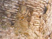 Ecco come si presenta attualmente la botola, con accanto il condotto realizzato all'interno della struttura muraria, del mastio del castello Ventimiglia sul m. Bonifato.  - Alcamo (2919 clic)
