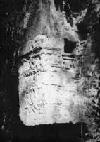 Peduccio portante dei costoloni della Fontanazza  - Alcamo (2754 clic)