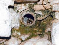 Monte Bonifato: Condotto intramurale della cisterna detta la funtanazza.  - Alcamo (3756 clic)